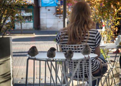 W kawiarni przy Chmielnej